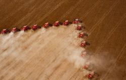 Novo levantamento deve consolidar hegemonia de MT na produção agrícola do país