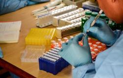 Em 24 horas, MT registra 26 mortes e 1.750 casos confirmados de Covid-19