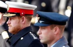 Grosseria de Harry com a rainha deixa príncipe William arrasado