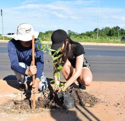 Energisa e Projeto Verde Novo renovam parceria