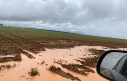 Prefeitura decreta estado de alerta devido a fortes chuvas que causaram alagamentos e destruição de lavouras em MT