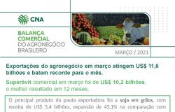 Exportações do agronegócio em março atingem recorde para o mês