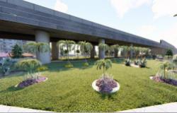 Projeto de jardinagem e paisagismo garante embelezamento do viaduto Murilo Domingos; Veja as imagens