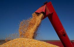 CNA e governo debatem Programa de Venda de Milho em Balcão