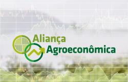 Aliança Agroeconômica faz análise do 1º trimestre do ano