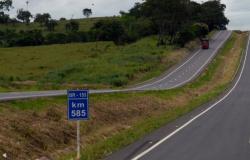 Consórcio Eco153 vence leilão do sistema rodoviário Tocantins-Goiás