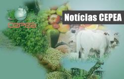 Estão disponíveis as agromensais de abril/2021