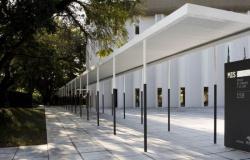 Museu da Imagem e do Som abre para visitação instalação lúdica