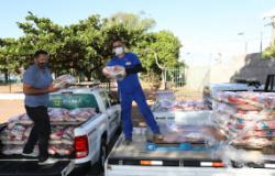 Fiscais doam 2 toneladas de alimentos e fortalecem campanha lançada pela primeira-dama Márcia Pinheiro