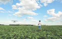 Artigo: desafio da tecnologia é fazer avanços chegarem a todos no campo, diz Meneguette