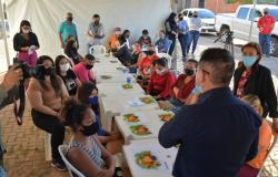 Botelho entrega certificados de cursos oferecidos pela Assembleia Social