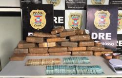 Combate ao tráfico resulta em 5,5 toneladas de drogas incineradas e 73 prisões em operações na região metropolitana