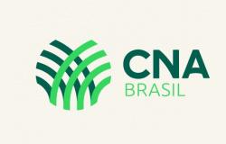 Campanha Agro Fraterno leva cestas de alimentos para Guanambi