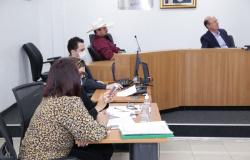 Comissão dá continuidade a discussões para prevenção e combate a incêndios do Pantanal