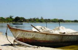 Rio: MPF intensifica ações contra a pesca ilegal na Região dos Lagos