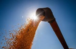 CNA apresenta perspectivas para o setor de grãos