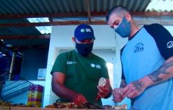 Dia do Maricultor: Senar ajuda produtor a seguir sonho com fazenda marinha
