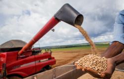 CNA afirma que o agro é parte da solução para a escassez de alimentos