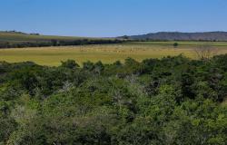CNA debate sustentabilidade da agropecuária brasileira