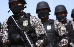 Força Nacional combate crimes ambientais no Amazonas e em Mato Grosso