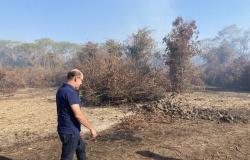 Avallone vai ao Pantanal e destaca união de forças para reduzir focos de incêndio