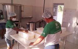 Sindicato Rural capacita profissionais para atuarem em cadeias produtivas específicas