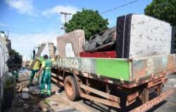 Cata-treco evita que pelo menos 5 toneladas de lixo por dia sejam descartadas de forma irregular