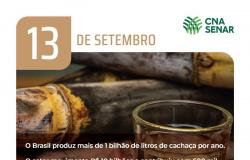Dia da Cachaça - Patrimônio nacional, bebida gera renda e emprego