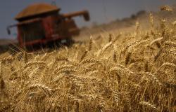 CNA discute acesso do produtor ao mercado de capitais