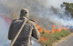 ALMT aprova em 1ª votação projeto que cria Programa estadual de prevenção a incêndios florestais