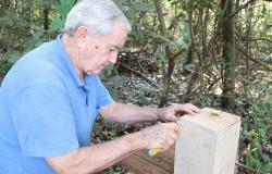 Em apenas 1 semestre, apicultor atendido pela ATeG MS transforma manejo e produção de mel