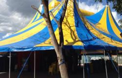 Governo lança campanha de apoio voltada à atividade circense