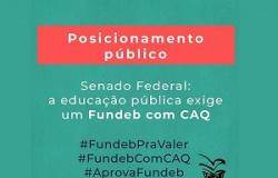 VALORIZAÇÃO PROFISSIONAL Senado Federal: a educação pública exige um Fundeb com CAQ