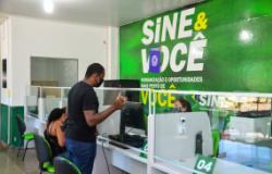 Sine Municipal oferece 13 vagas para motorista e 10 para operador de telemarketing
