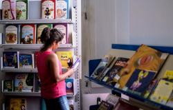 Campanha 'Olha o que estou lendo' compartilha indicações de leitura pela internet