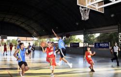 Governo retoma programa e lança a primeira fase do Bolsa Atleta