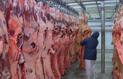 Carne exportada em MT aumentou 18% em 2020 e movimentou 1,8 milhão de dólares