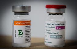 Colegiado define como serão distribuídas 85 mil doses de vacina contra Covid-19