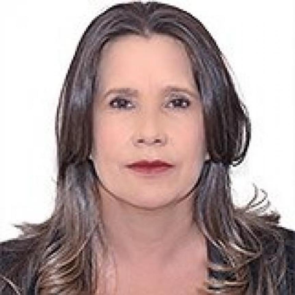 Cassação de deputado abre vaga para suplente, vereadora por Cáceres
