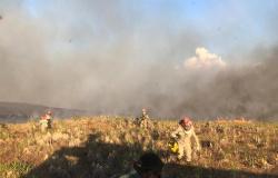 Rosa Neide cobra ações contra as queimadas em Mato Grosso