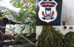 Chamam atenção prisões por crimes de roubo e tráfico no Assentamento Antônio Conselheiro