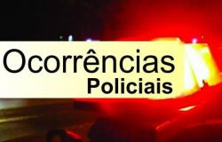 Mulher pelada xinga policiais em Santo Afonso e é presa por desacato