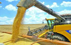 Exportação de soja de Mato Grosso atinge recorde em abril, diz boletim do Imea