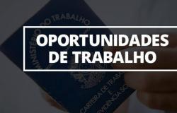 Veja vagas de emprego no SINE de Tangará da Serra para esta sexta-feira