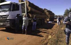 Caminhão carregado com madeira passa por cima de motociclista