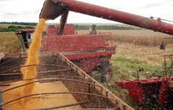 Plano Safra 2020/2021: Produtores terão R$ 4,1 bilhões em recursos no Sicredi