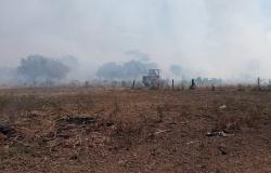Incêndio que começou há 10 dias já atingiu 40 mil hectares no Pantanal de Mato Grosso