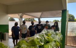 Nova Olímpia - Assistência Social recebe doação de hortaliças do Instituto Florescer