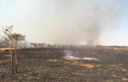 Incêndio deixou rastro de destruição em fazenda de Tangará da Serra; fogo foi controlado