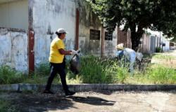 Mato Grosso tem 107 municípios com alto risco para a dengue